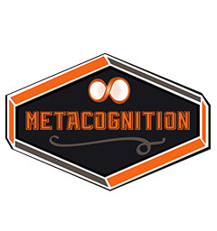 metacognition image